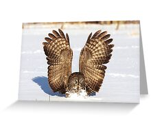 Caught - Great Grey Owl Greeting Card