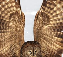 Caught - Great Grey Owl Sticker