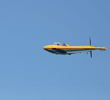NORTHROP N9M by fsmitchellphoto