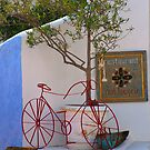 Red Bicycle Restaurant by phil decocco
