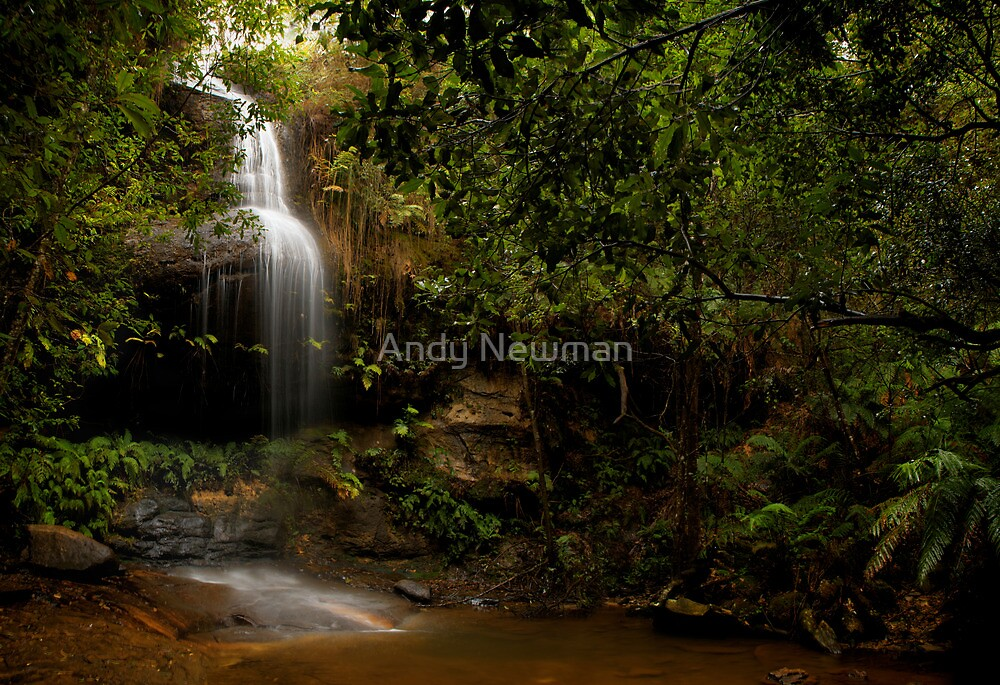 Adelina Falls, Blue Mountains, New South Wales. by Andy Newman
