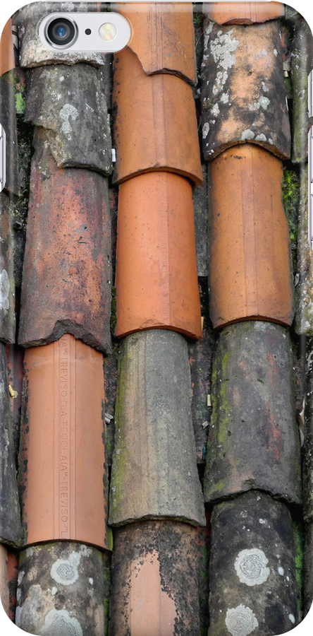 Old and new roof tiles by VanOostrum