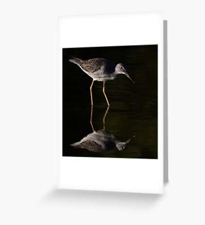Greater Yellowlegs Reflects Greeting Card