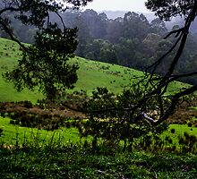 the valley 2 by ketut suwitra