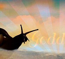 Goddessey by queenadeboever