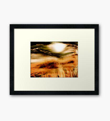 sun through the mist Framed Print