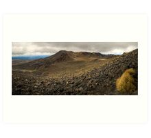 Volcanic Paradise, Mt Tongariro Art Print