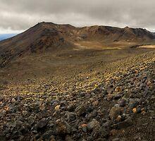 Volcanic Paradise, Mt Tongariro by Michael Treloar
