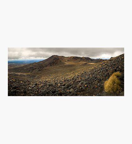 Volcanic Paradise, Mt Tongariro Photographic Print