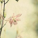 Secret Garden 2 by lorrainem