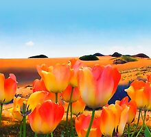 East Meets West, vibrant sand dunes and tulips by Glimmersmith