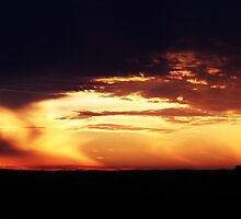 Pine Point Sunset  by Isabelle Hare