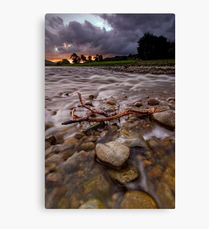 Dawn Torment Canvas Print