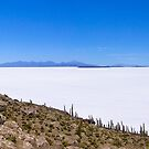 Salar de Uyuni Panorama by Nick  Taylor