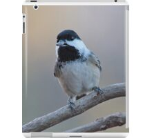 Chickadee with sunflower seed iPad Case/Skin