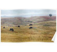 Indian Reservation, South Dakota USA Poster