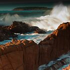 Murramarang wave  by Nick  Taylor
