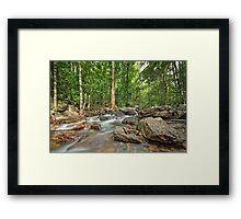 Florence Falls Creek Landscape Framed Print