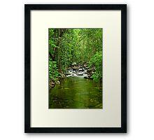 Florence Falls Creek - Portrait Framed Print
