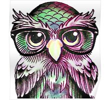Funny Colorful Tattoo Wise Owl With Glasses  Poster