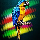 Parrot by Vidka Art