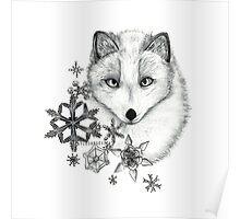 Artic Fox Poster