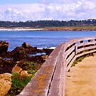 """Views of Carmel"" Carmel, CA by AlexandraZloto"