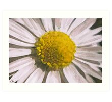 Daisy Watercolour Composition Art Print