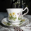 beautiful tea Cup by ack1128