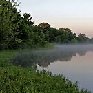 Morning Mist above Lake Pickens by aprilann