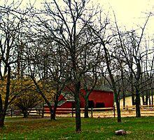 Tempe Wick Barn, Jockey Hollow, Morris County NJ by Jane Neill-Hancock