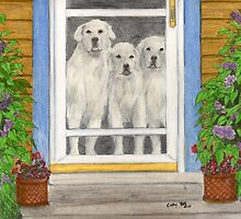 Great Pyrenees Dogs Porch Cathy Peek Animals by Cathy Peek