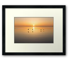 Two Pairs or Four of a Kind? Framed Print