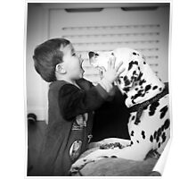 dalmatian kissing child Poster