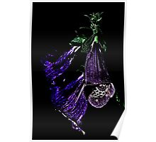 Deep Purple Aged Blooms Poster