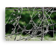 Tangled Up Canvas Print