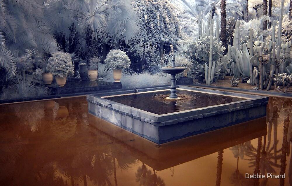 YSL Gardens Marrakesh Morocco (infrared) by Debbie Pinard