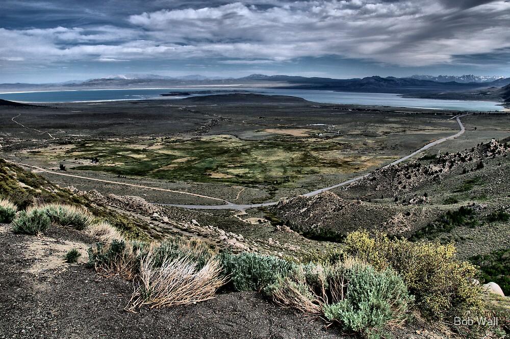 Mono Lake Vista by Bob Wall