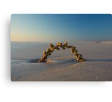 Seaweed Arc - Cable Beach - Broome WA Canvas Print