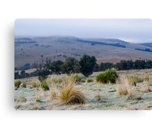 Omeo Mornings. Canvas Print