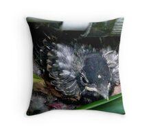 Weatherstaff's Robin Throw Pillow
