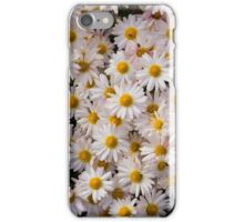 Daisies of Fall iPhone Case/Skin