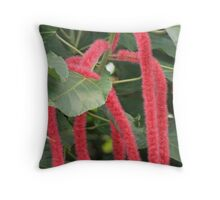 Red Hot Cat Tails Throw Pillow