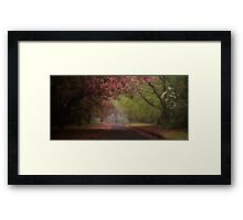 The Queen In Spring - Mount Wilson and Mount Irvine  NSW - The HDR Experience Framed Print