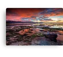 Petrol pools Canvas Print