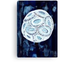 Coccolithophore Canvas Print