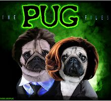 The PUG Files  by darklordpug