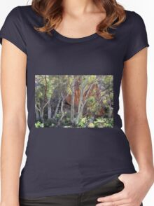 Brachina Gorge Women's Fitted Scoop T-Shirt