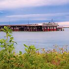 Harbour and Industry Pano Gladstone Australia by PhotoJoJo