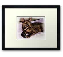 Dad, I have something to tell you Framed Print